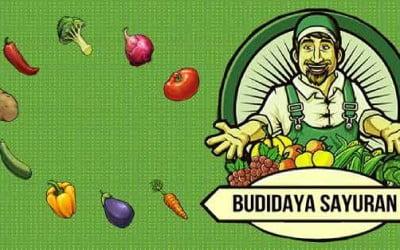 Release Aplikasi Budidaya Sayuran Berbasis Android